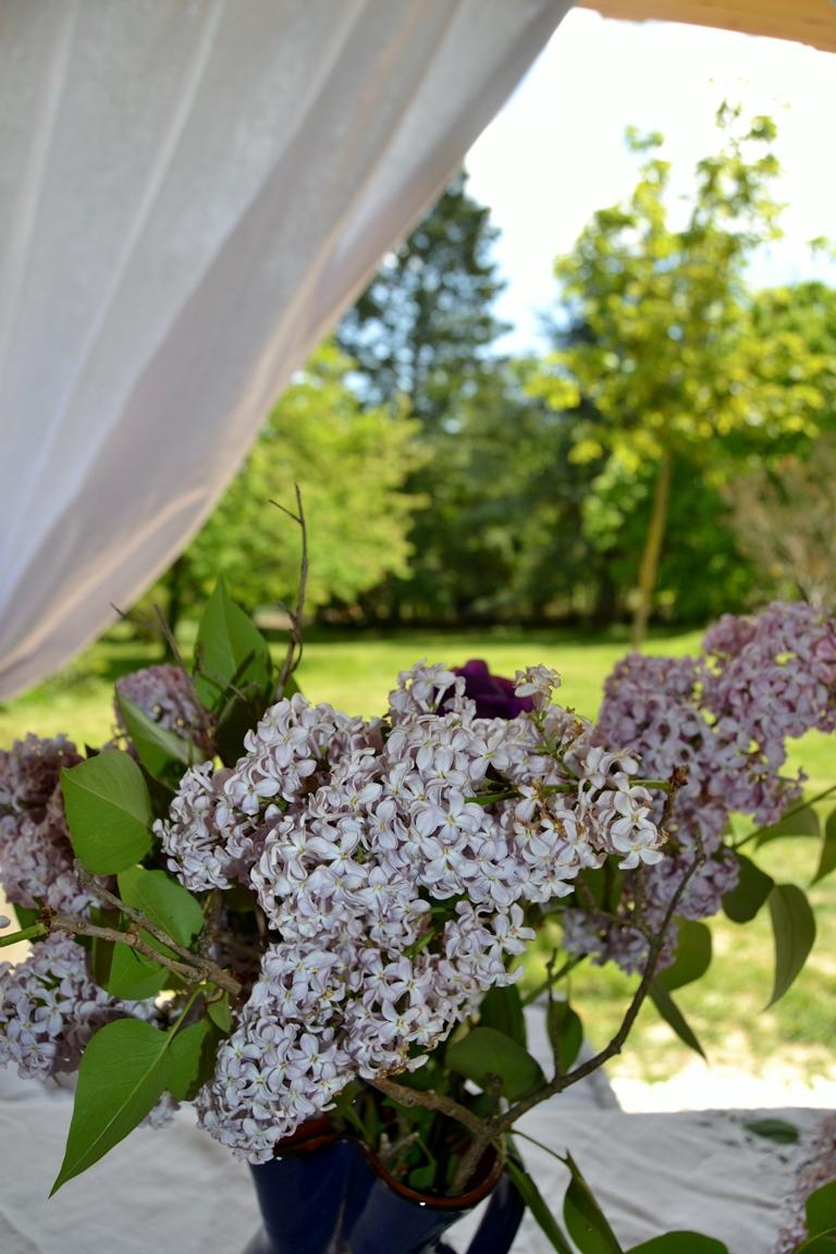 Les lilas sur la terrasse 1